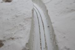 Tims-snow-02